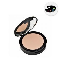 COLOR_WD-01_-8211-Wet_Dry_compact_make-up.jpg_1